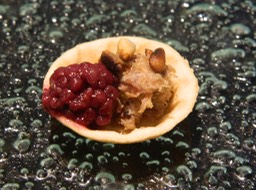 Duck Rillettes with Blackberry & Chambord Compote with Toasted Pinenuts